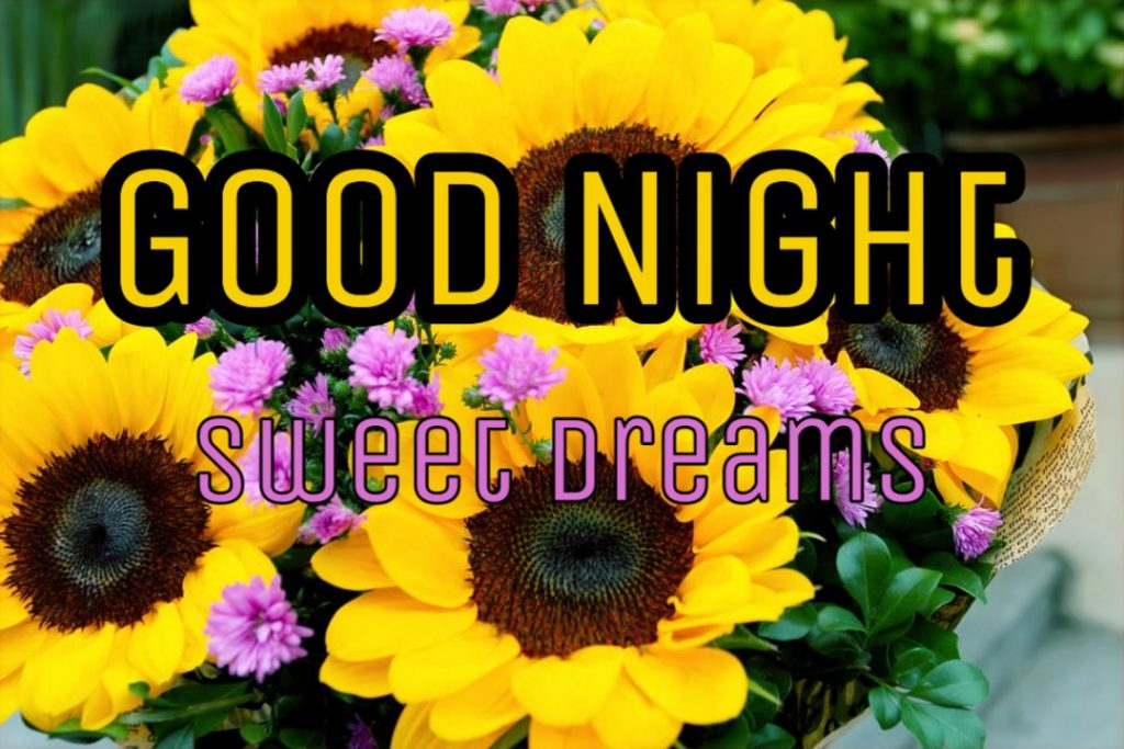 good night flowers images download