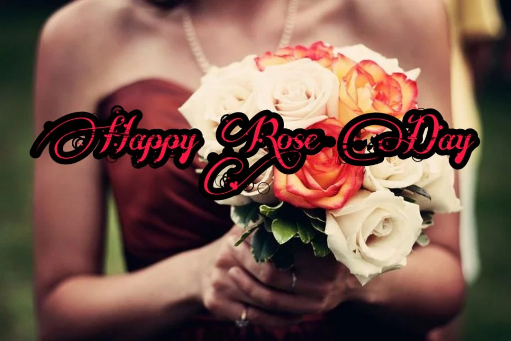 happy rose day hd wallpapers