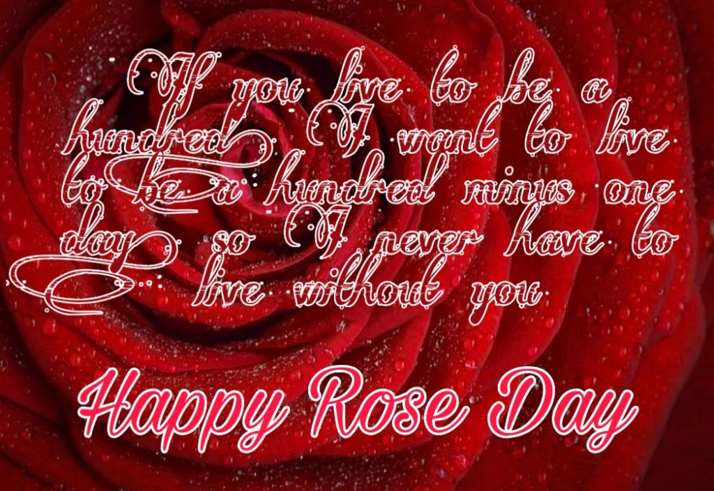 rose day images with quotes for wife