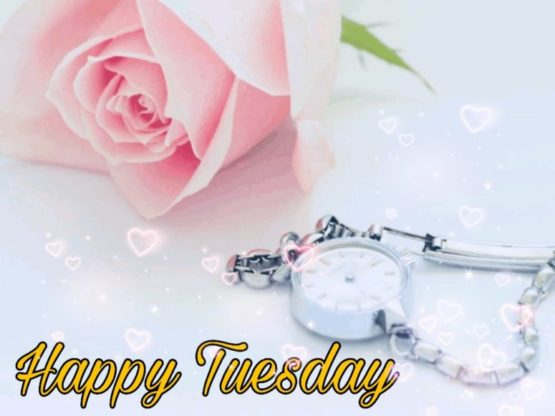 happy tuesday clipart
