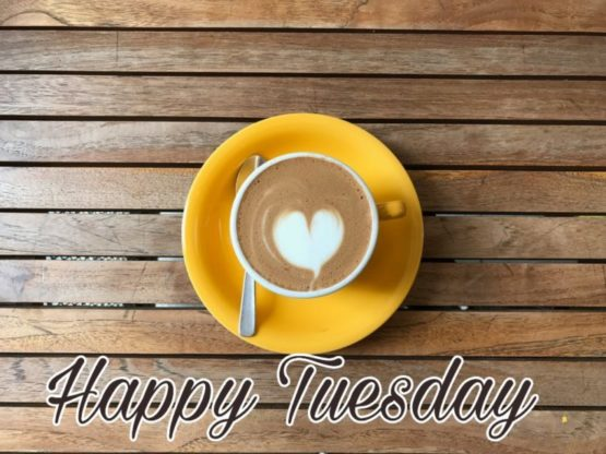happy tuesday animated images