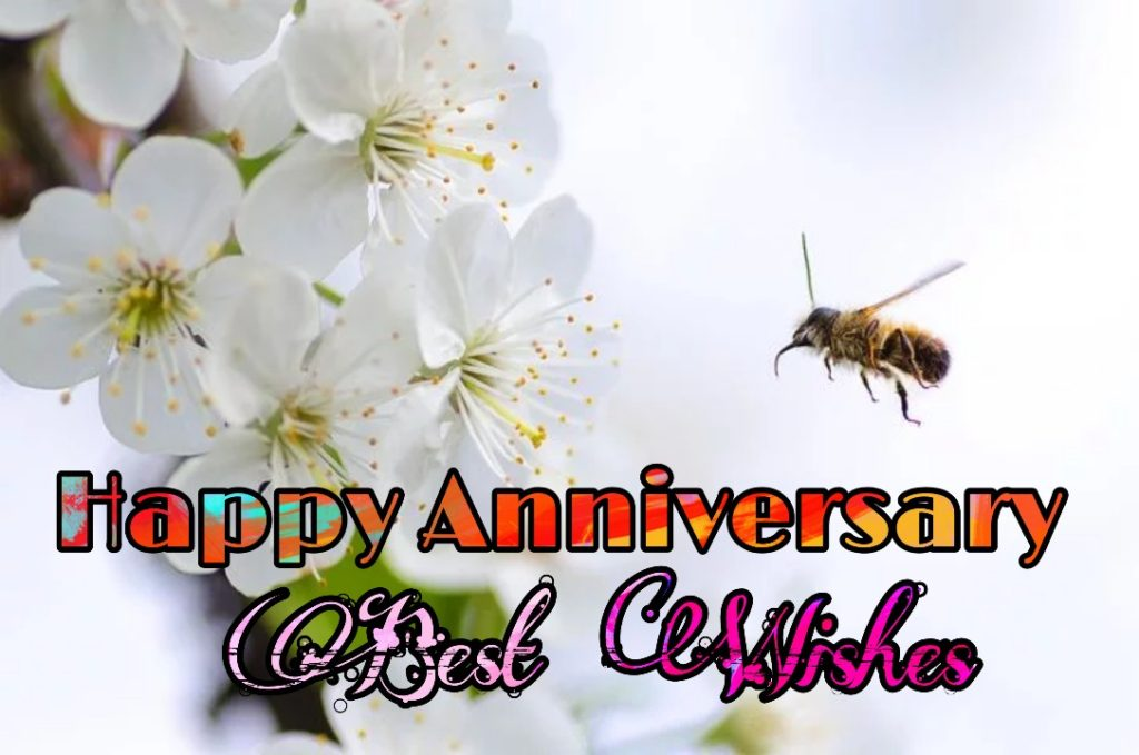 happy wedding anniversary images free download